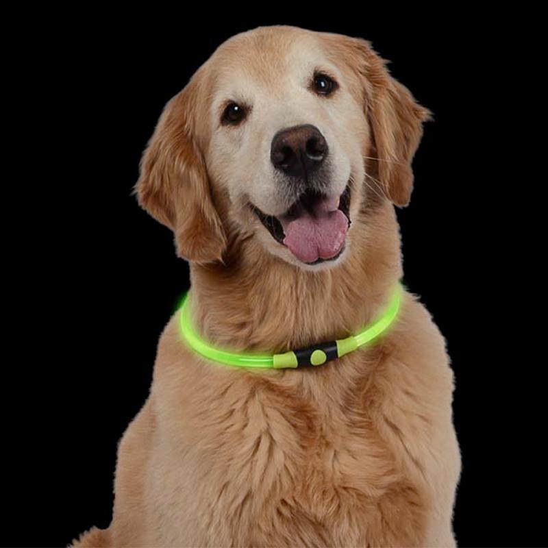 Premium Halsband Leuchtschlauch Leuchthalsband Hundehalsband Blinklicht LED Grün