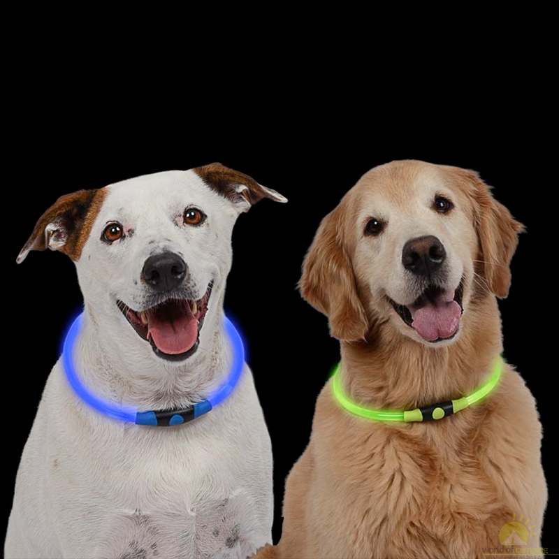 Premium Halsband Leuchtschlauch Leuchthalsband Hundehalsband Blinklicht LED Hund